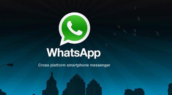 whatsapp video calls in groups