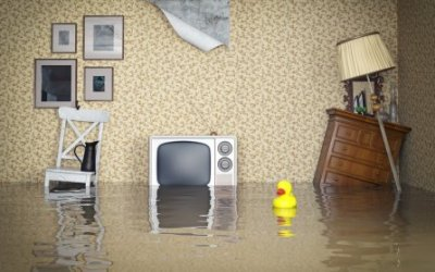Flooding Got You Down?  Here's some tips and tricks for dealing with the aftermath…