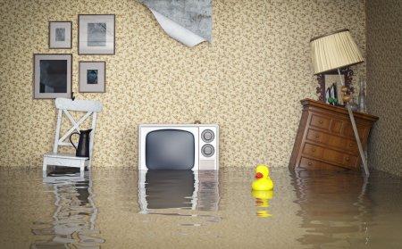 victoria flood