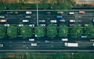 Tazzi é a nova app portuguesa de mobilidade partilhada sustentável