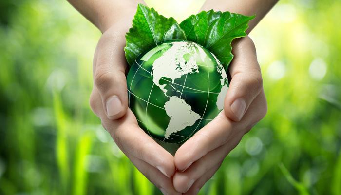 Empresario demanda conservar medio ambiente y foresta en RD