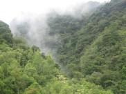Panorámica Áreas La Labor en la Reserva Biológica Guisayote