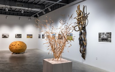 MoCA Westport Announces Free Admission To The Gallery For All Visitors