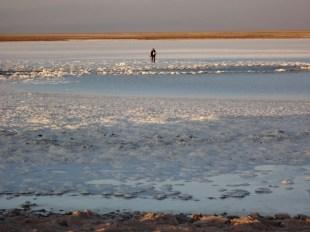 Laguna Tevinquinche - Deserto do Atacama