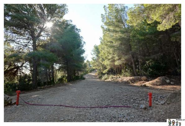 Camino amplio ruta Oltà