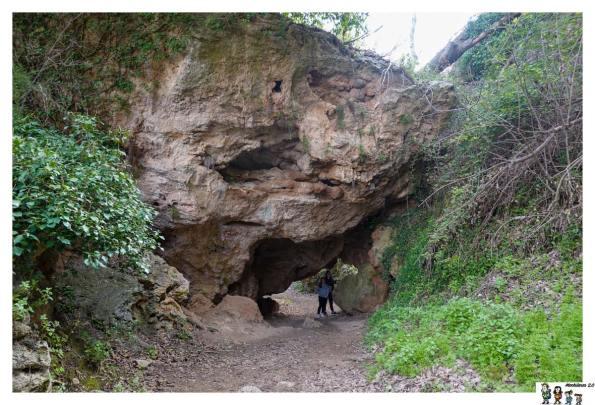 Rocas calizas en la Ruta de las Fuentes