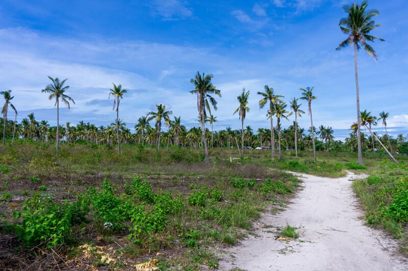 que hacer en Bantayan Filipinas guia completa 2021