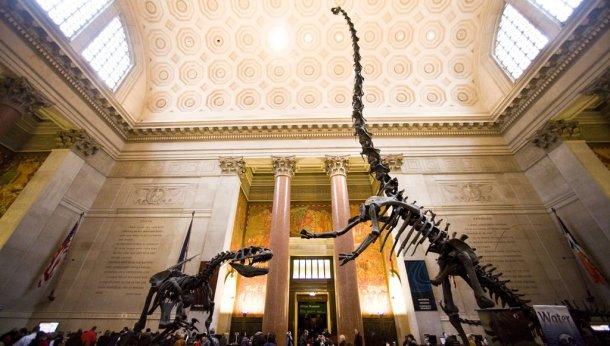 New-York CityPass Museo Historia Natural Nueva York