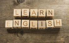 Full-immersion, cursos de inglés para adultos en el extranjero