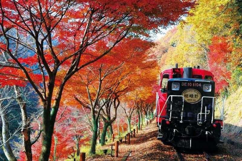 que ver en arashiyama MochileroViajando.com