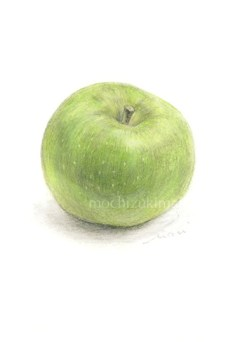 「Bramley Apple」 望月麻里(鉛筆、色鉛筆)illustrated by Mari Mochizuki