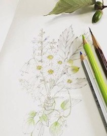 Sketching・素描