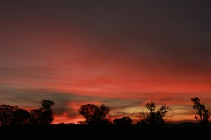 sunset april 19 X 4