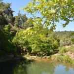 beautiful lake in the forest of Kemerdere 2