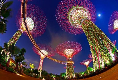 best attractions in Singapore, Bay Gardens 3