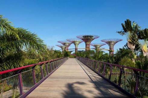 best attractions in Singapore, Bay Gardens 4