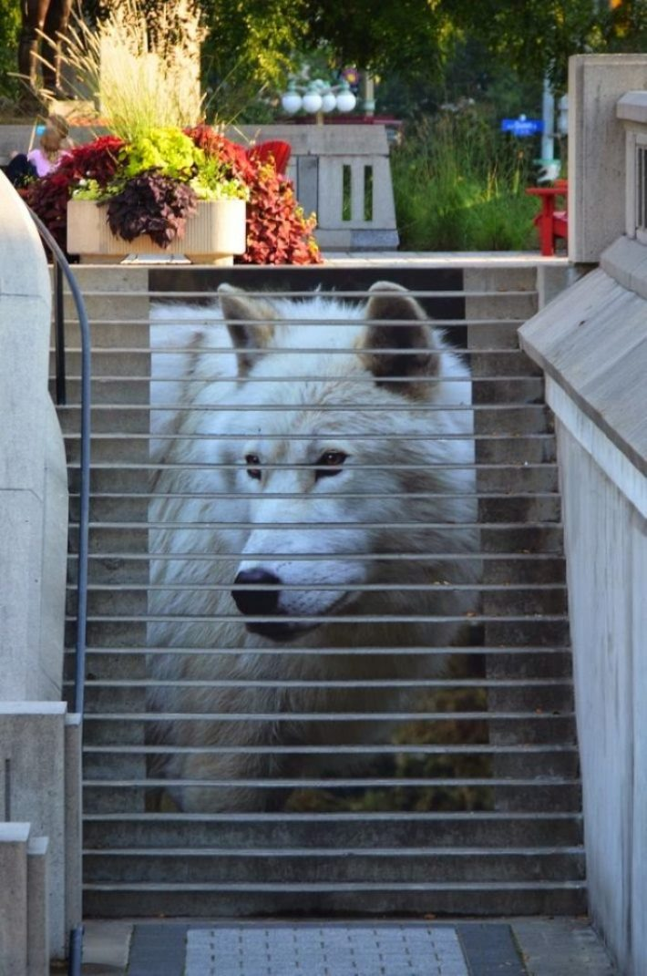 amazing stairs street art around the world, Ottawa - Canada