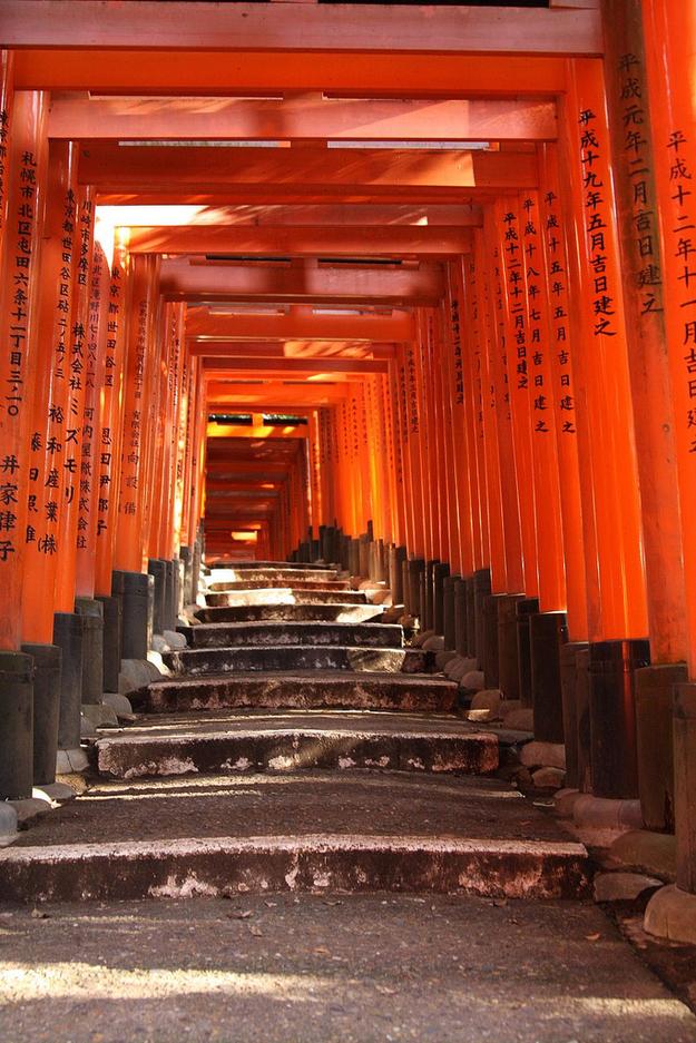 amazing paths around the world, Kyoto Japan