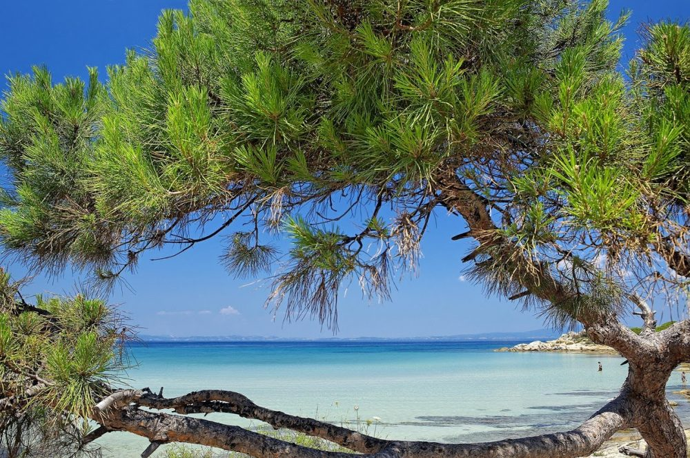 Paliouri Beach, Halkidiki-The Best Beach in Kassandra