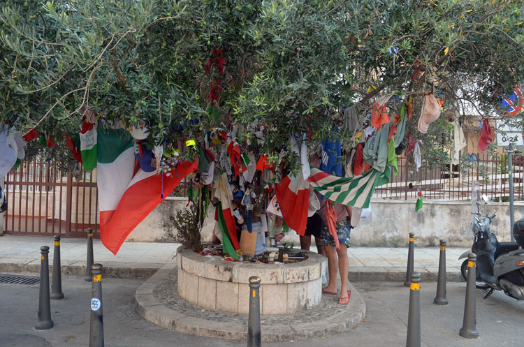 things to see in Palermo, Falcone and Borsellino tree