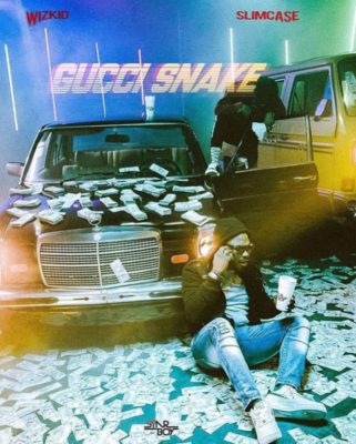 Wizkid GUCCI SNAKE Ft Slimcase gucci sneakers
