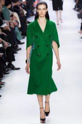 Dana Taylor - Christian Dior Fall 2014