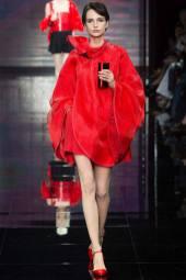 Agnese Zogla - Armani Privé Fall 2014 Couture