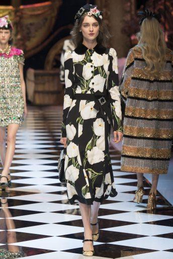 Daga Ziober - Dolce & Gabbana Fall 2016 Ready-to-Wear