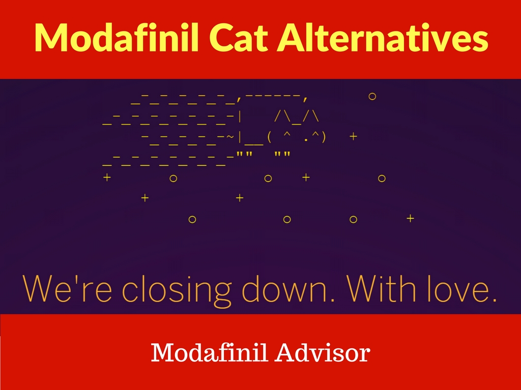 modafinil cat alternative modafinil sources