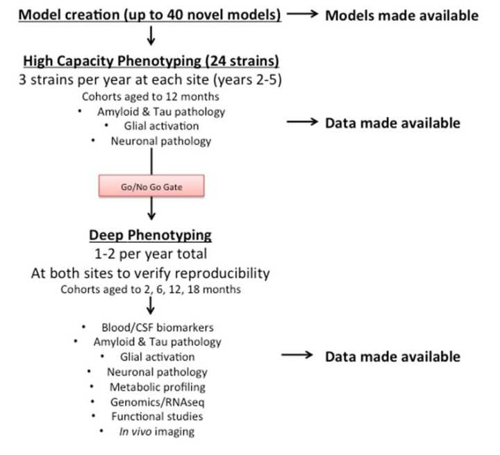 DMP Flow Chart v2