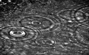 Sous la pluie!
