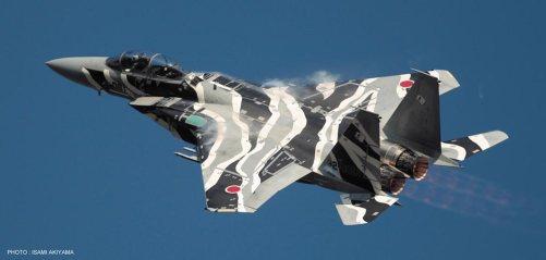 1/72 F-15J Eagle Aggressor No.081 Limited Edition