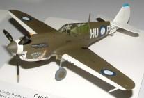 Leigh's P-40N