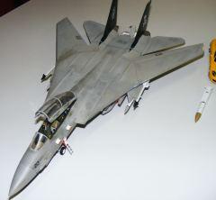 Seans F-14 Tomcat