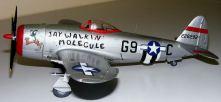 Wayne's P-47 side view
