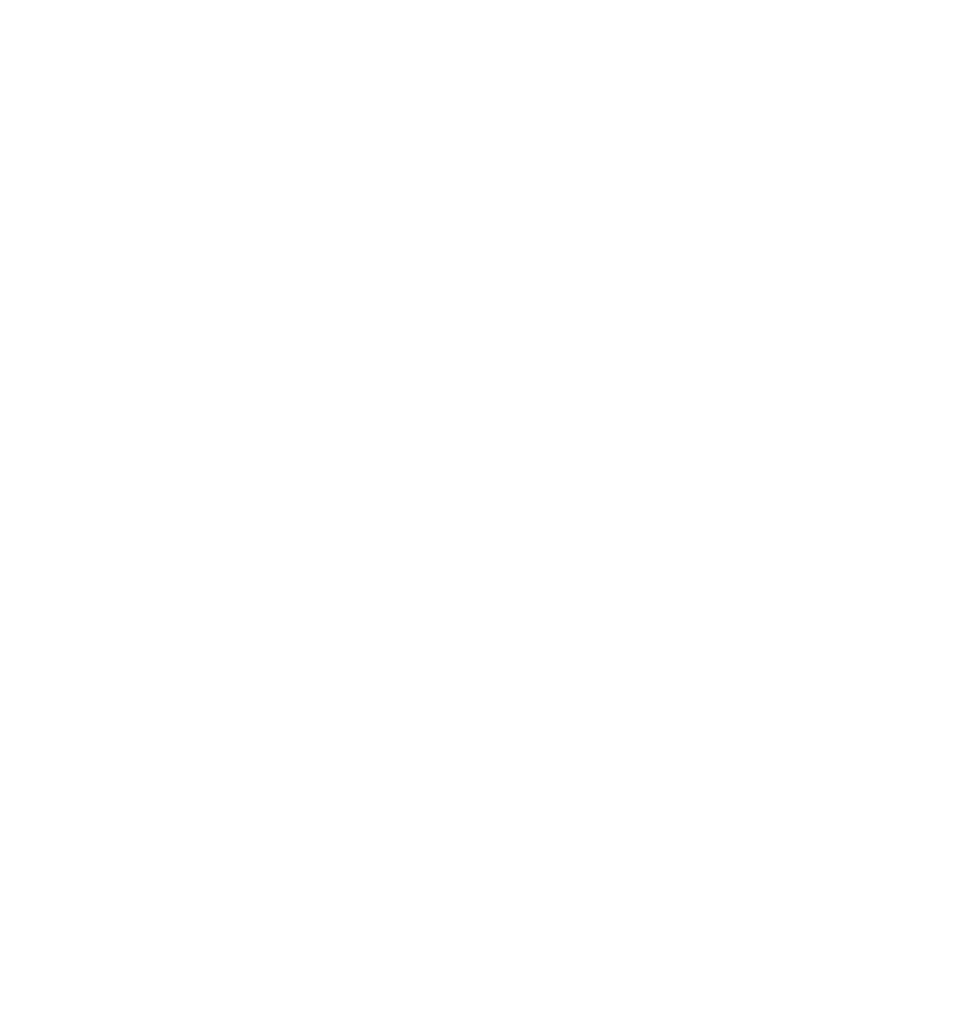 Modelschool International Logo Weiss