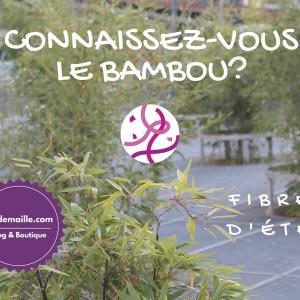 Tout savoir sur le bambou à tricoter