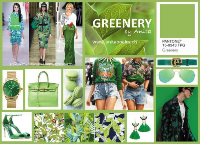 Greenery by Anita