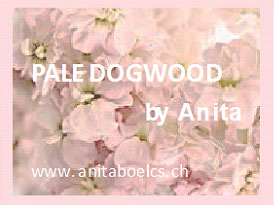 Rose pâle Dogwood by Anita