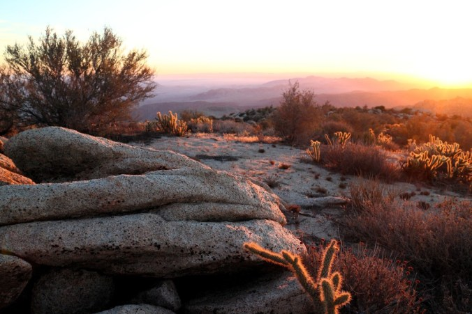 Finding my wilderness self