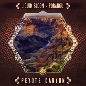 "Liquid Bloom & Porangui Drop New Desert Spiritual ""Peyote Canyon"" Journey"