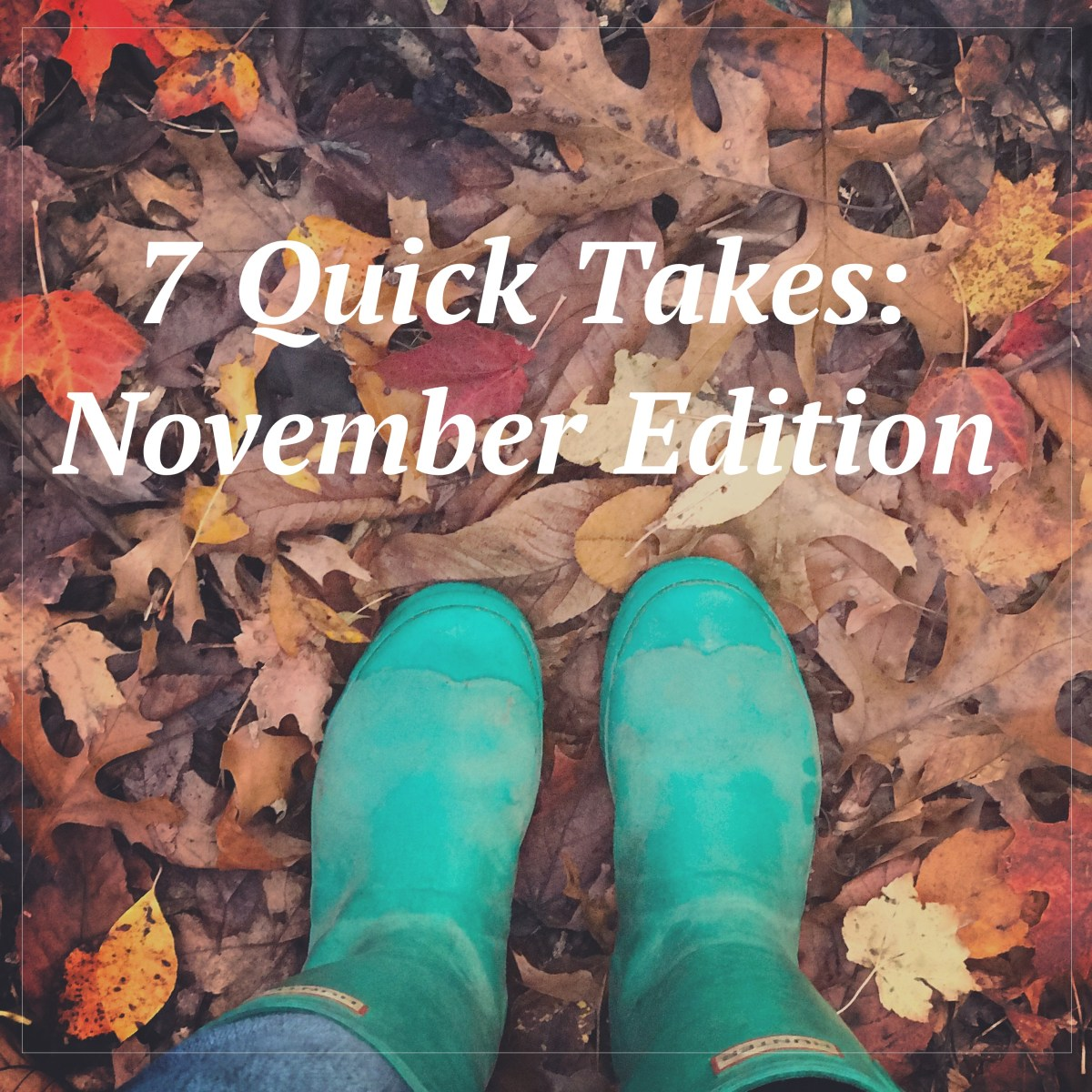 7 Quicktakes:November Edition