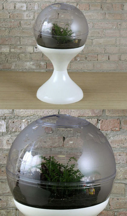 Go Modern With Your Plants Modern Charlotte NC Homes
