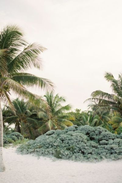 Daydreaming Of Tulum: A Visual Diary