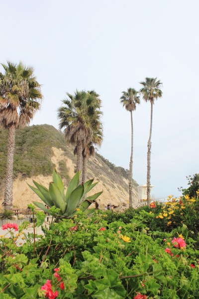 An Insider's Guide To Santa Barbara + Hidden Gems You Won't Find In The Travel Books