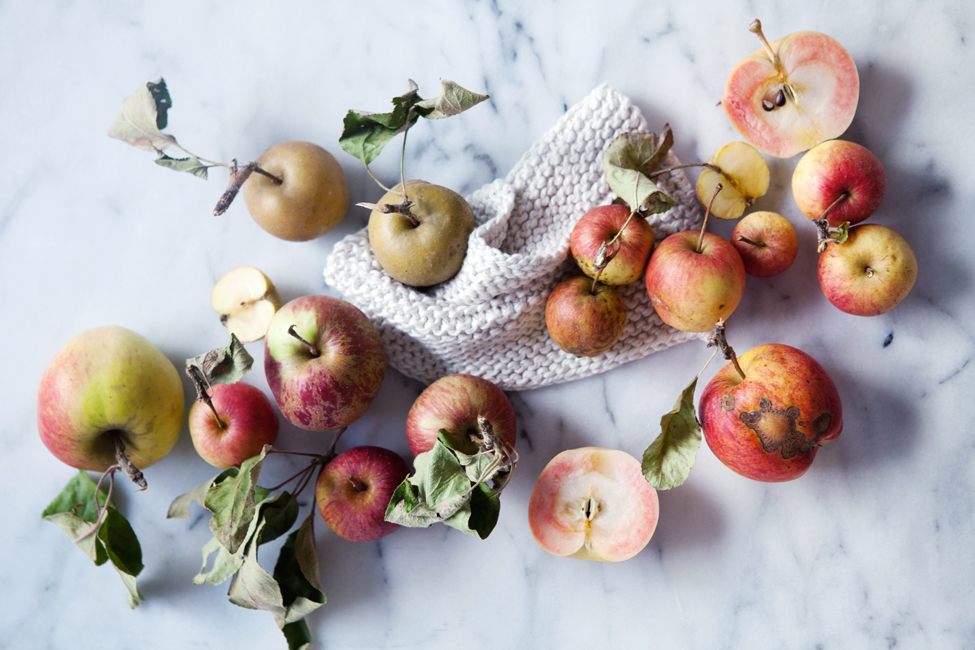 Where To Go Apple Picking In Northern California + Your Outfit Guide For A Picture Perfect Day In The Orchards