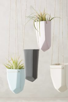 Shop: Air Planter / Modern Daydream Living