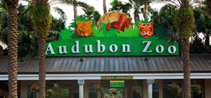 Audubon Zoo Family Time! How do you spend Family Time?