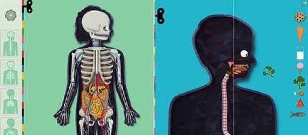 1-humanbodyapp