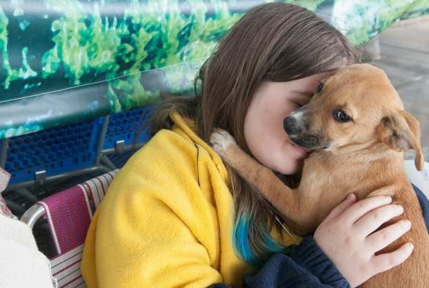 303_dog_adoptions_2015Sep12_4